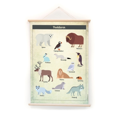 Arctic Animals Print